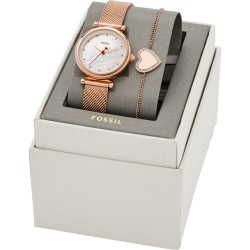 Watch Fossil Love